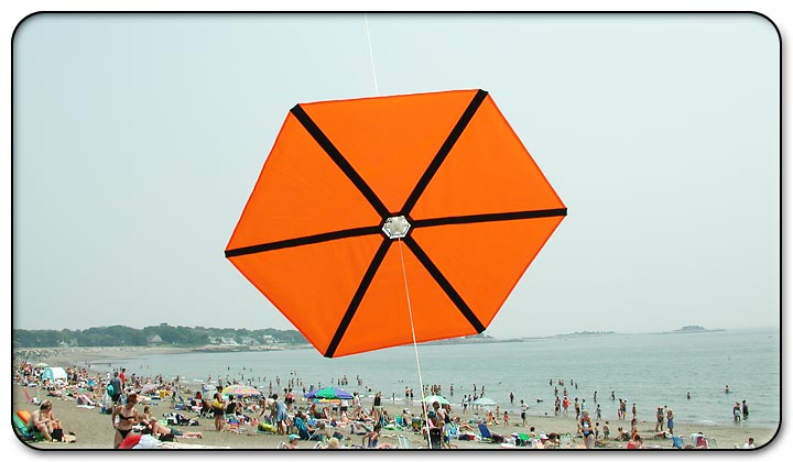 Kite Festival at Devereux Beach.